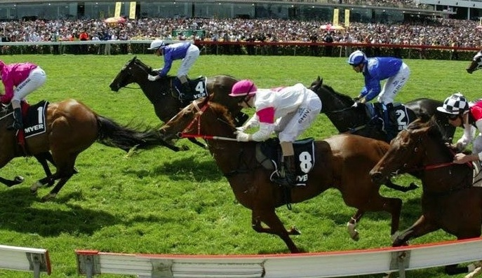 Equine-Herpes-Punters-Need-To-Factor-In-Horse-Health